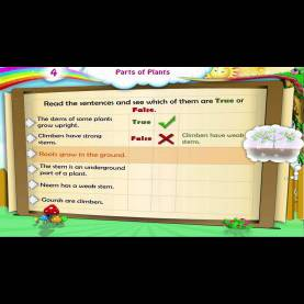 Valuable Detailed Lesson Plan In Science 3 Parts Of A Plant Learn Grade 3 - Science - Parts Of Plants - You