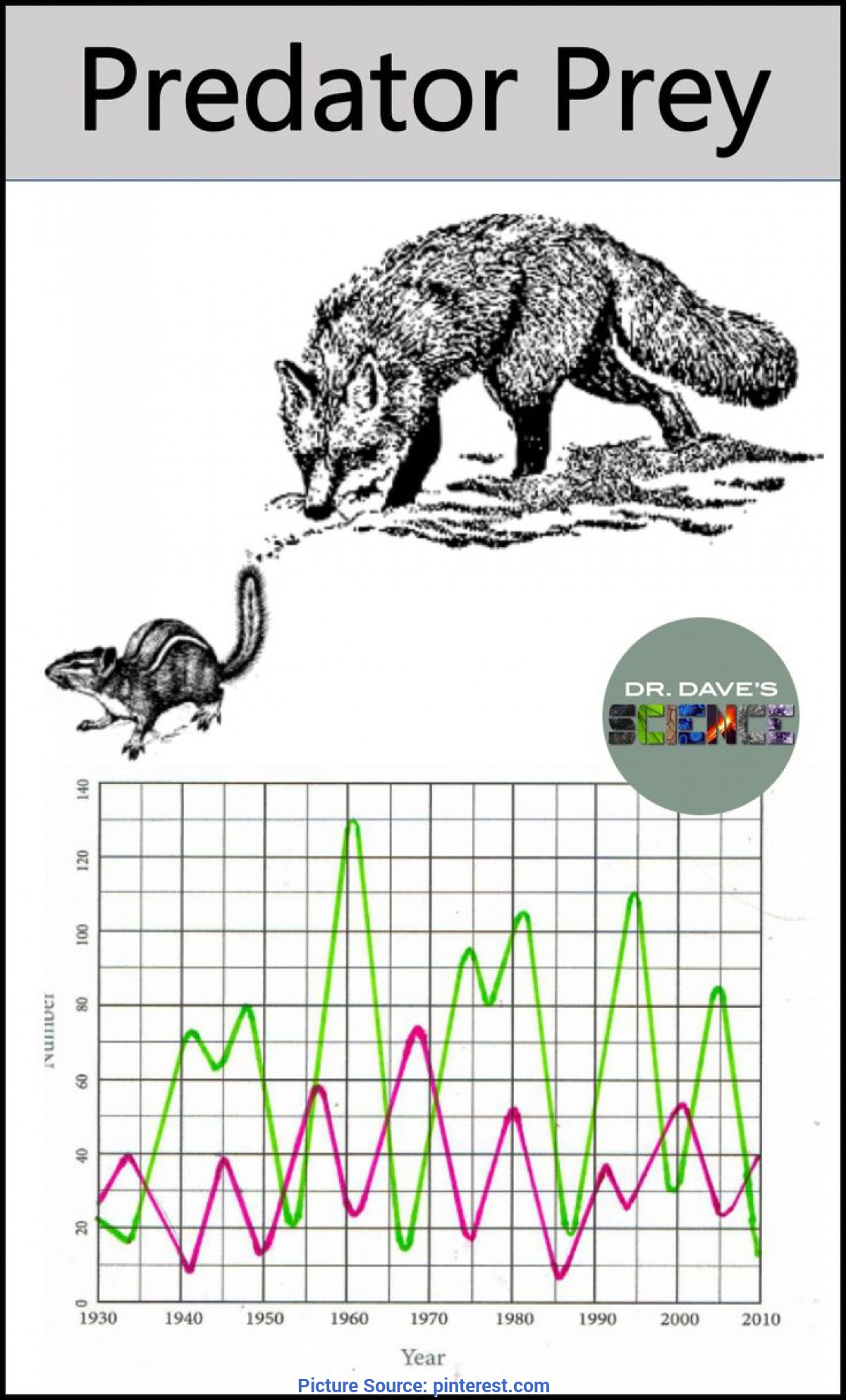 Trending Lesson Plan For Environmental Science Predator Prey Relationship And Graph | Document Camera, Lesso