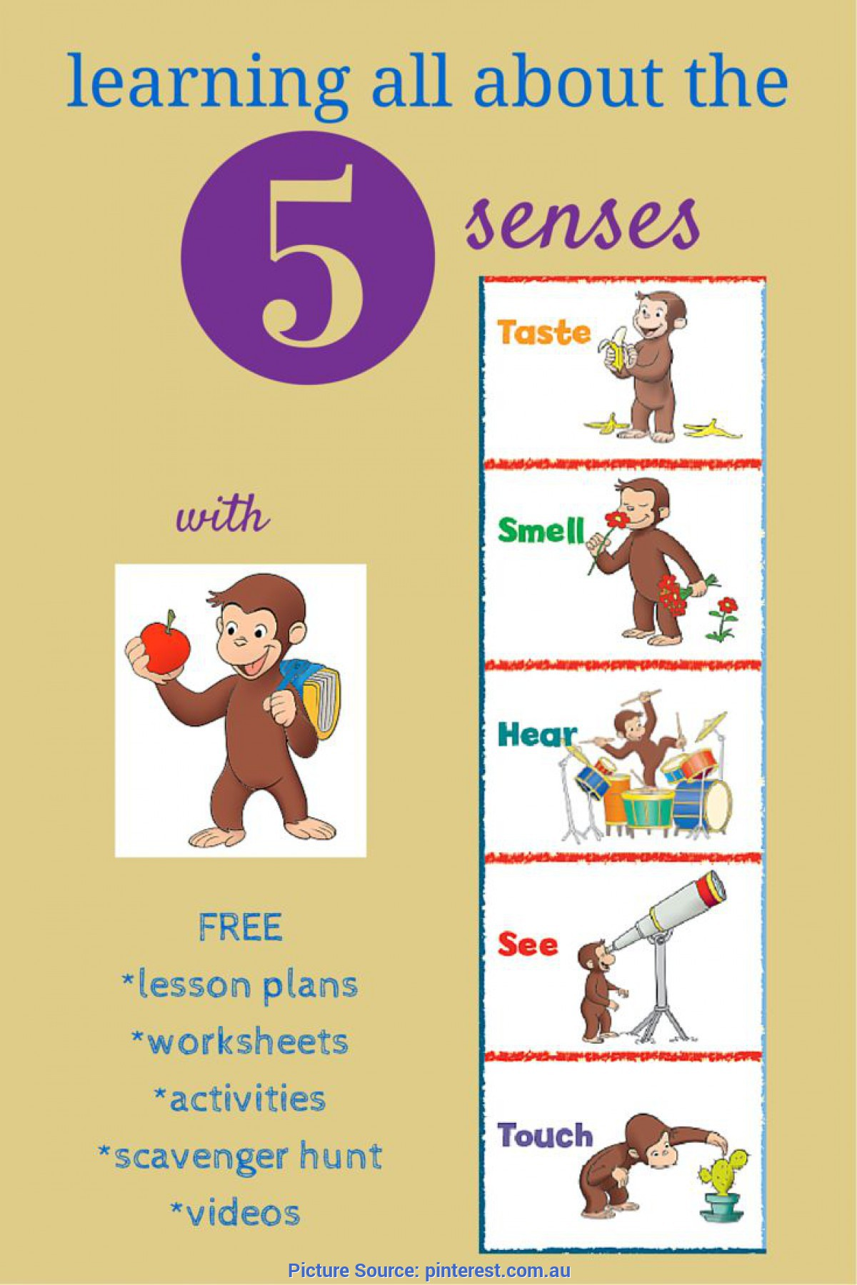 Typical Pre K Lesson Plans About Five Senses Resources To Teach Kids About The 5 Senses + Sensory Issue