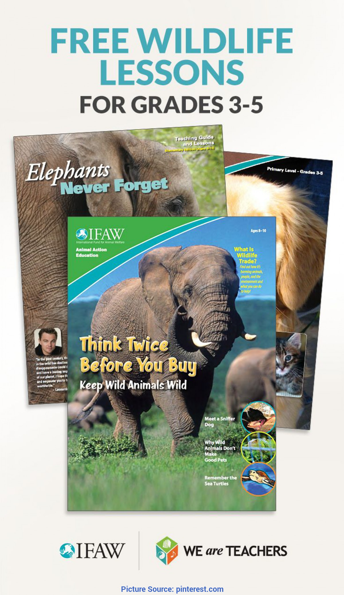 Unusual Science Lesson Plans For Ages 3-5 Animal Studies   Math, Homeschool And Science Bio